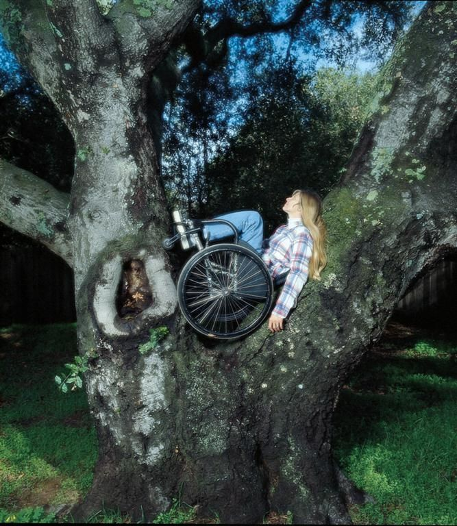 Woman in a wheelchair in a tree
